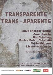 Afis Transparente Trans-aparenta 2019 SIMEZA